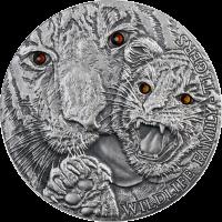"""Ниуэ 1 доллар 2013 г., PROOF, """"Тигры"""""""